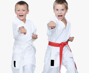 542-5429215_hd-images-of-karate-hd-png-download